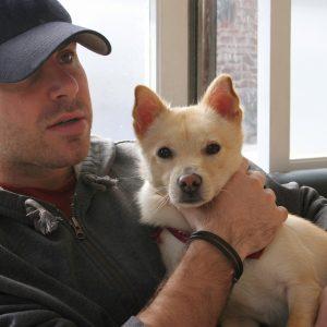 Humane Animal Removal Euthanasia Dog Sad